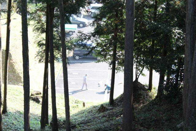 林の向こうの駐車場。 あのおふたりは一体なにを??