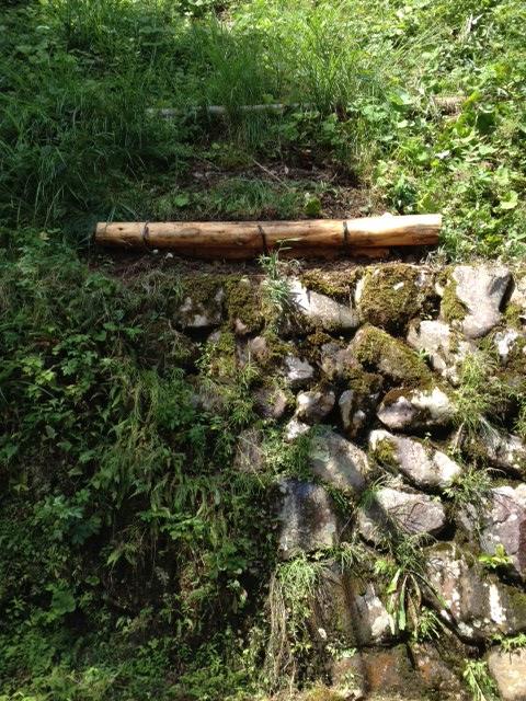 美肌の丸太は草刈りメンズのための足場となりました。