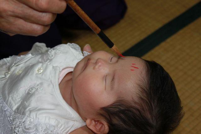 「赤ちゃん 赤ちゃん、眠っていたら宮司さんの思うツボですよ。おでこにいたずらされますよ。」 「あたし、寝るのが仕事ですから。」